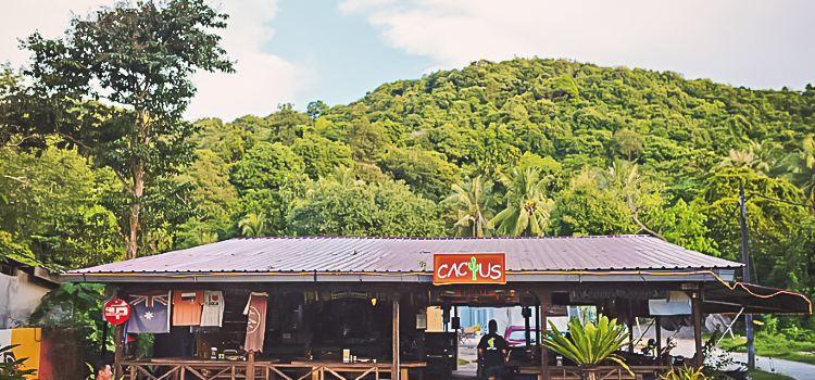 Cactus Restaurant