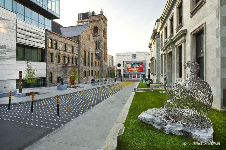 The Montreal Museum of Fine Arts3