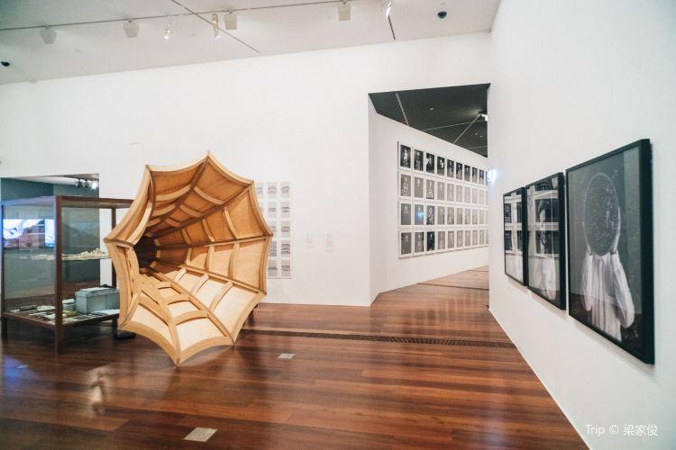 The Ian Potter Museum of Art4