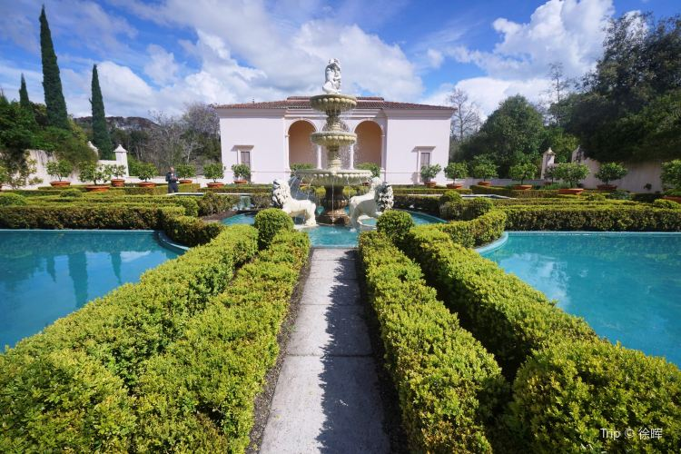 漢密爾頓花園4
