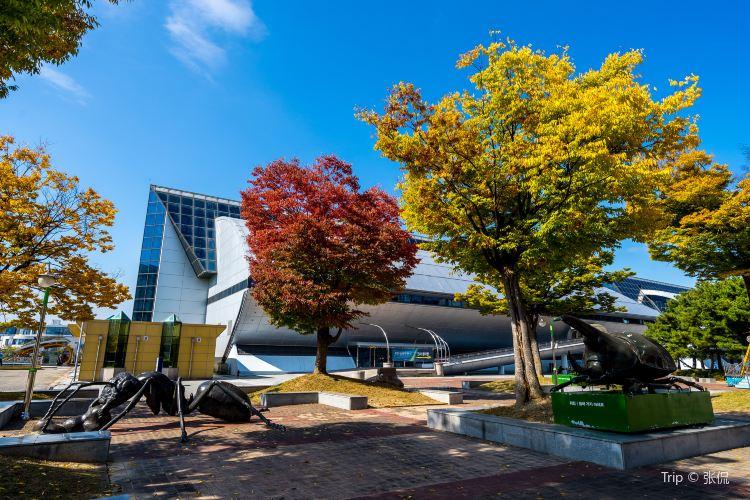 대전엑스포과학공원1