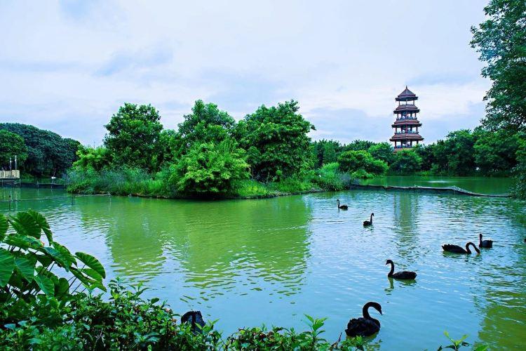 Xiangshi Zoo1