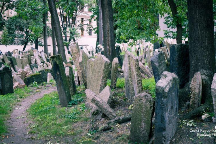 Old Jewish Cemetery3