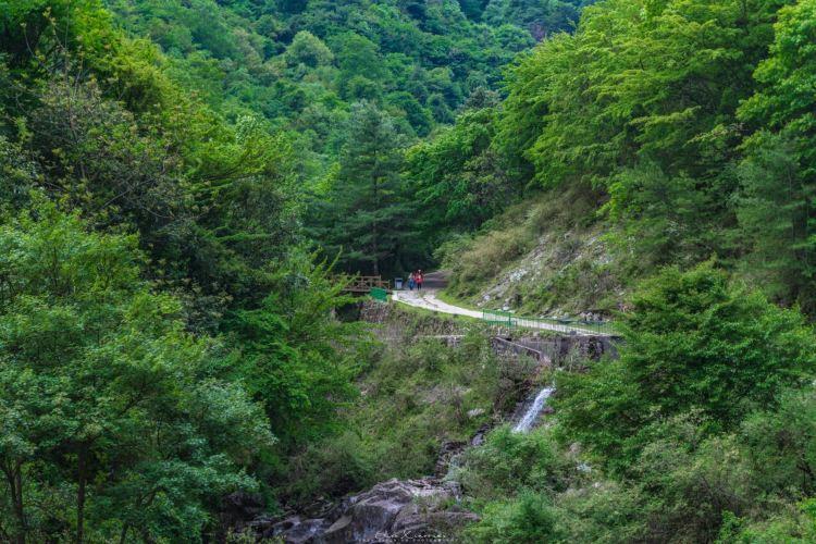 Tangjia River Nature Reserve4