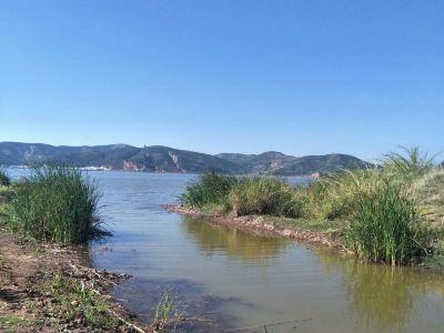 Jiangkou Niaozhou Nature Reserve