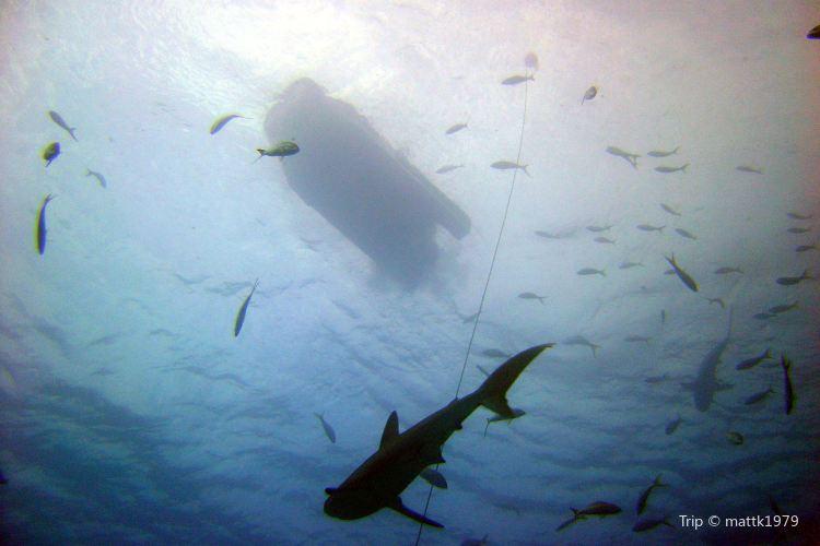 Xanadu Underseas Adventures