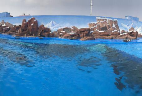 Dashayu Water Amusement Park