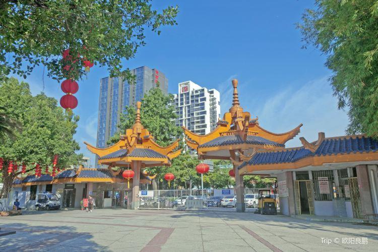 Jinsha Park2