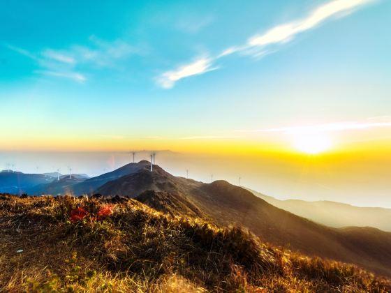 浮山嶺風景區