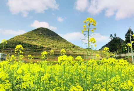 貴州龍里大草原景區