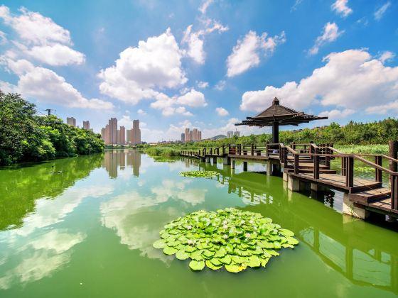 前関湿地公園