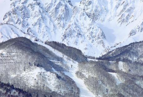 八方尾根滑雪場