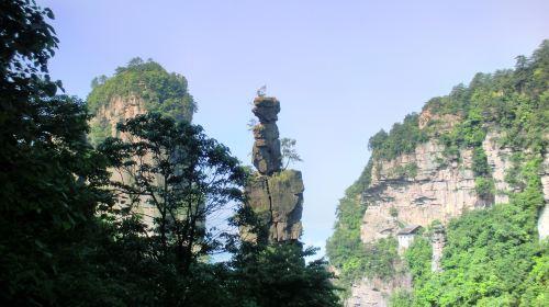 Yangjiajie