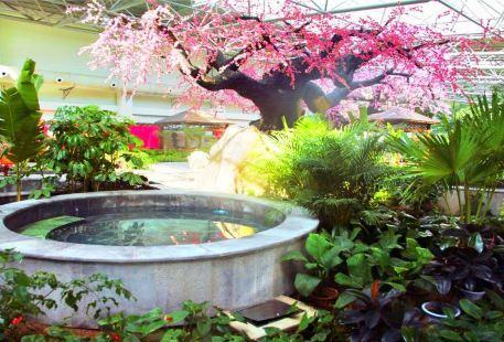 Tanggangzi Beiyuan Hot Spring