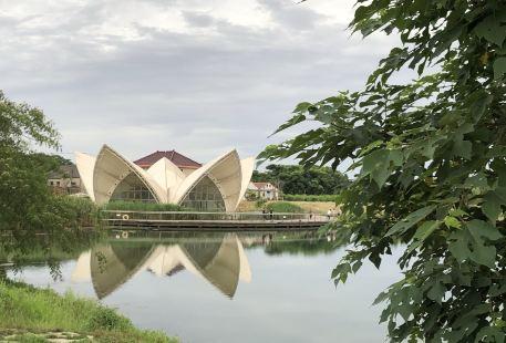 七星湖生態園