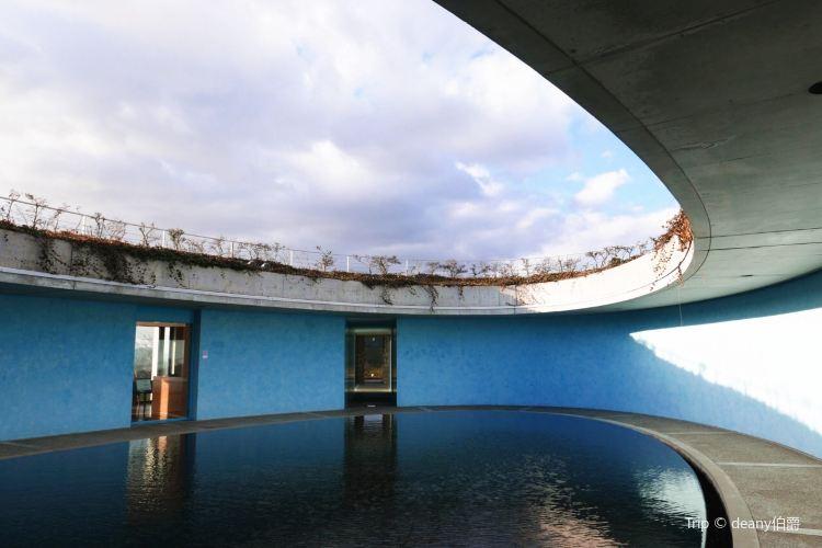 直島當代美術館2