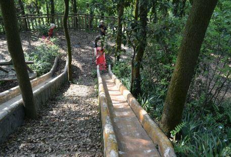 Chongqing Chengshi Jingying Zhenren Cs Julebu Qiaoping Resort