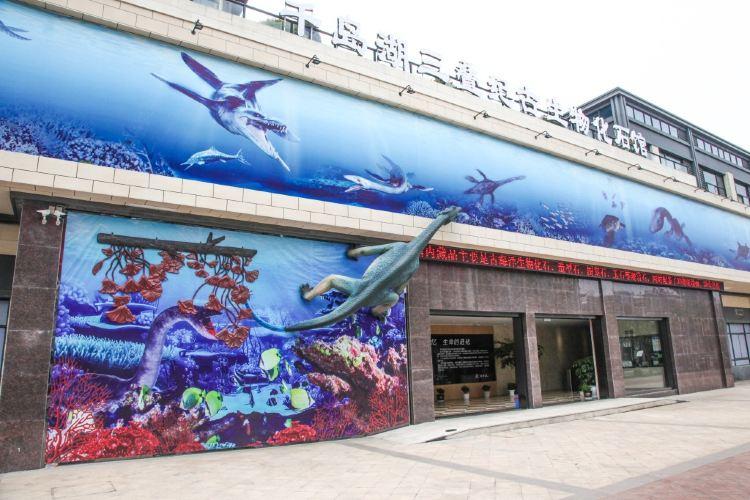 千島湖三疊紀古生物化石館1