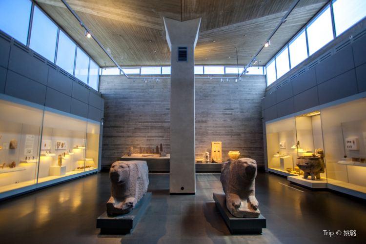 イスラエル博物館2