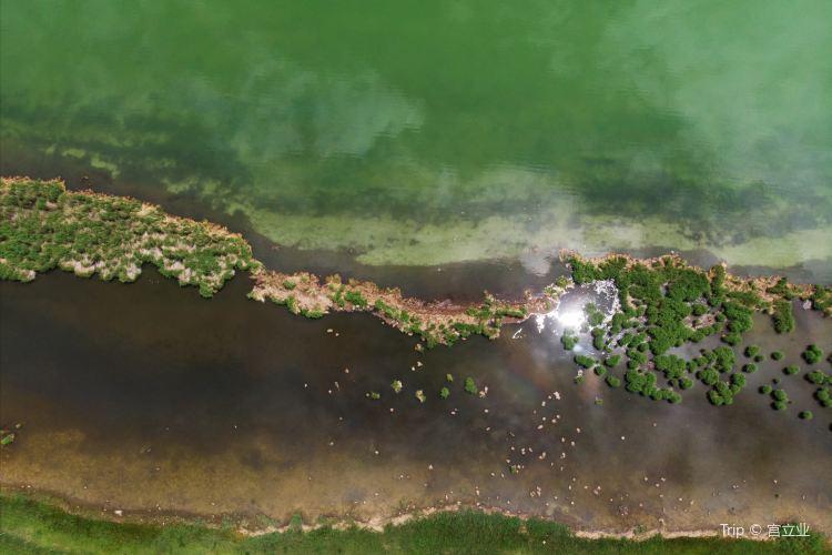 Tuosu Lake3
