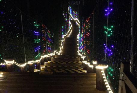 Fukulun Lake Night Market