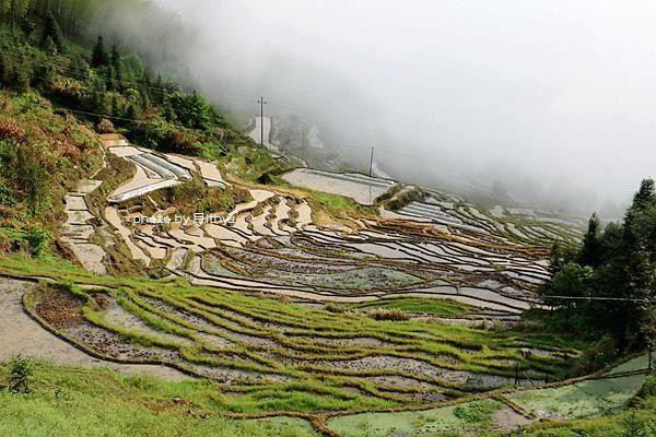 Lianhe Terraced field3
