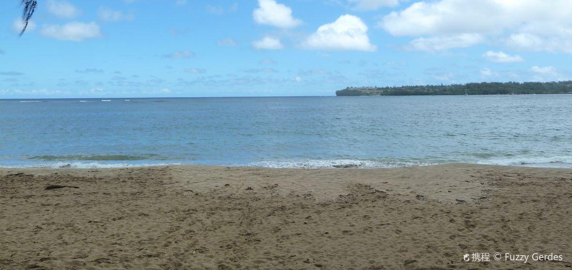維客樂-夏威夷島