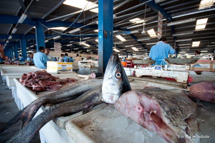Dubai Fish Market4