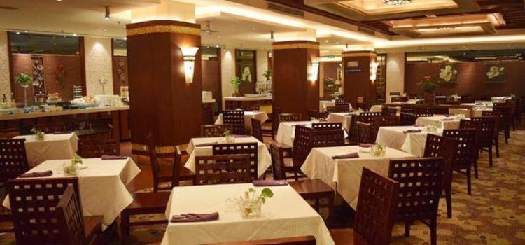 青城豪生國際酒店(瑪雅西餐廳)1