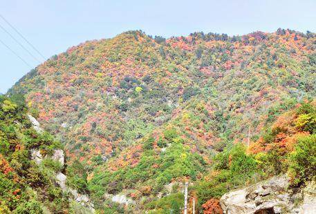 Qinghua Mountain