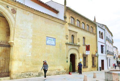 Museum of Bellas Arts de Cordoba