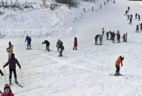 金霖森林公園滑雪場