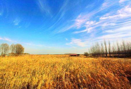 孟津黃河濕地自然保護區