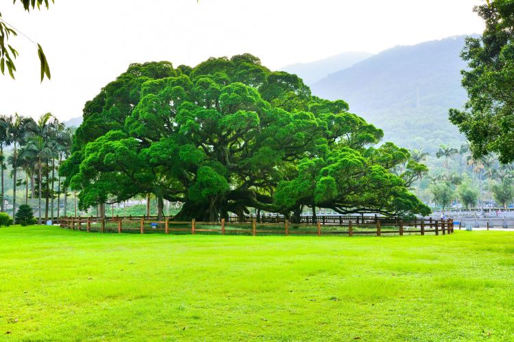 푸저우 국가삼림공원