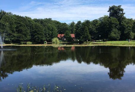 Tortilin Pond