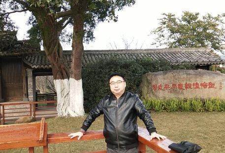 Gediao& Shenghuo Gallery