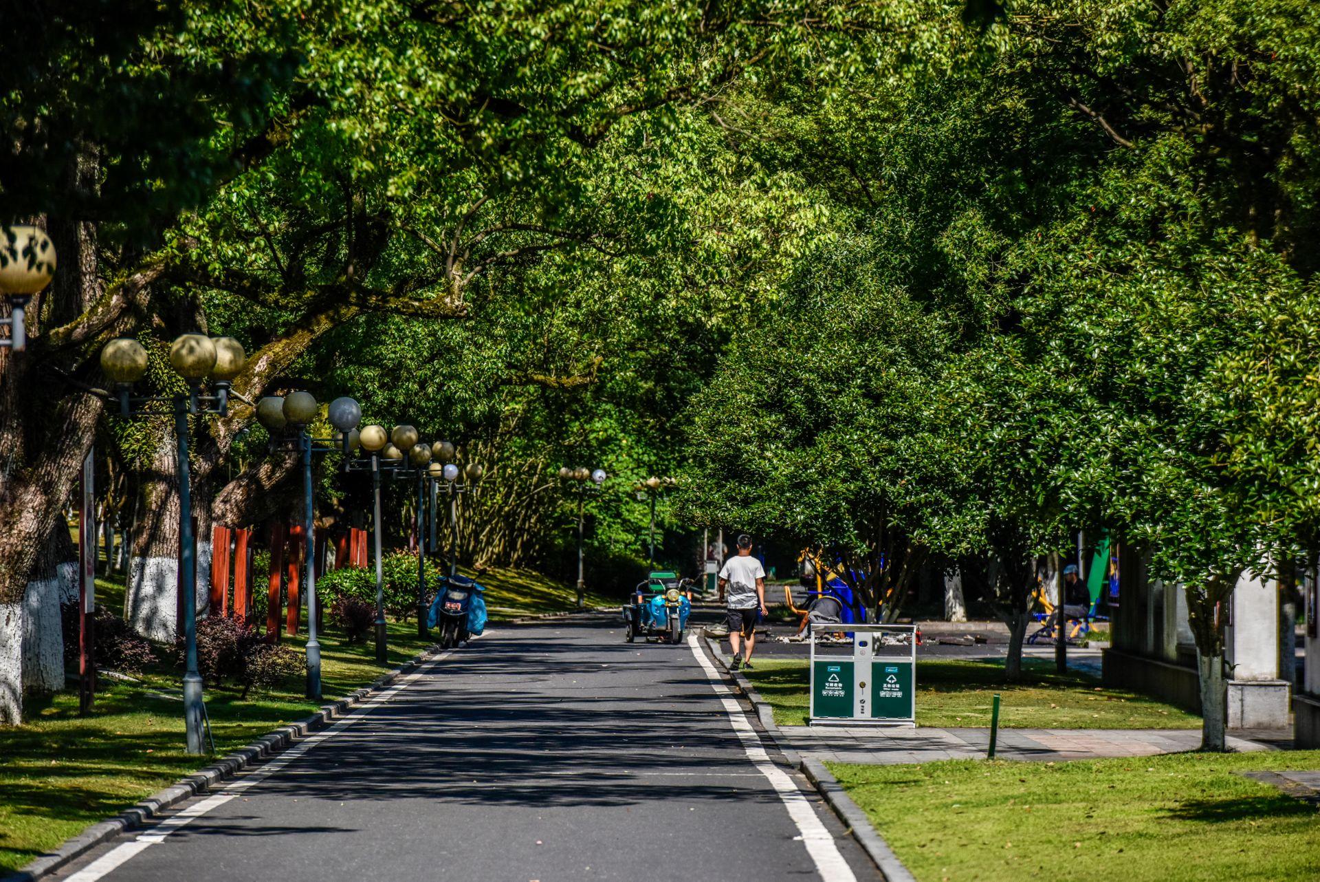 Jiangxinzhou Binhe Park