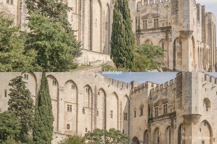 阿維尼翁聖母大教堂2