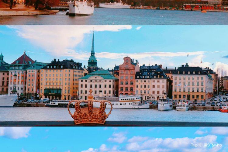 瑞典國家博物館4