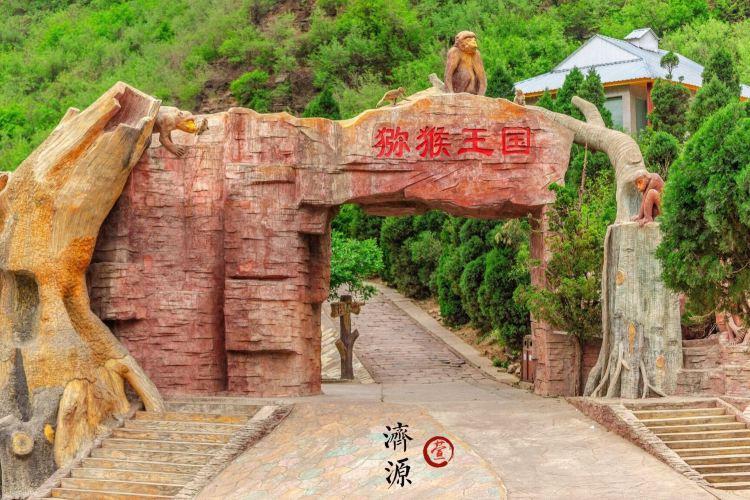 五龍口風景區4