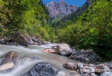 紮尕那山景藏家樂