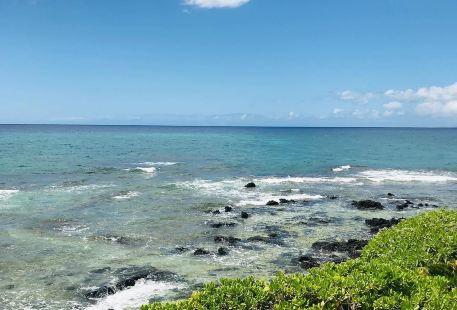 Puako Bay
