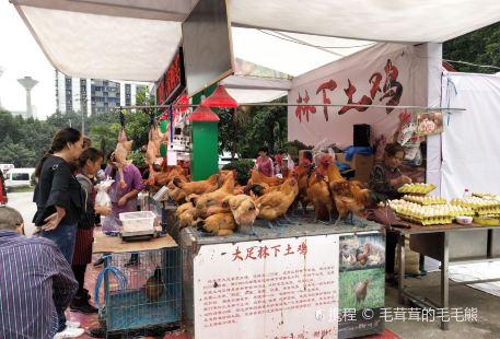 Chongqing Exhibition Center