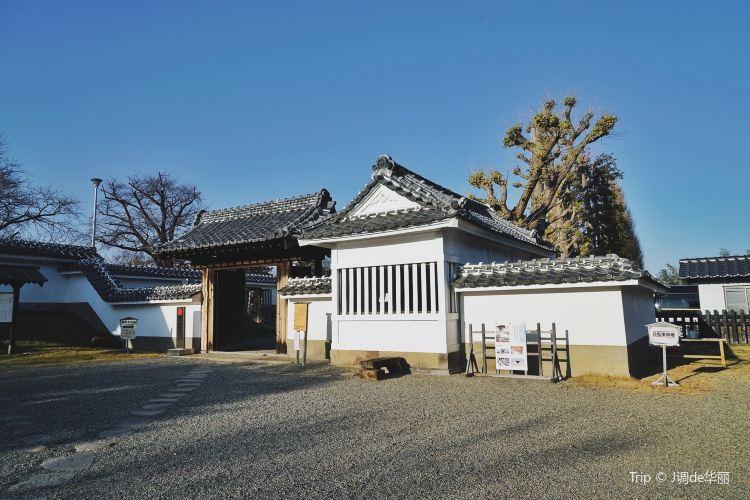Kodokan Park1