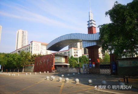 Ziyang Library