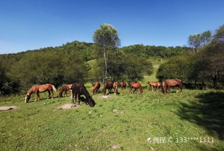 Guanshan Datang Private Ranch