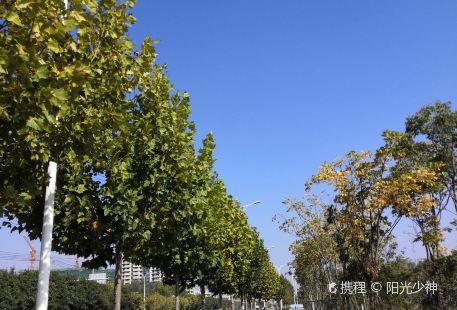 Shengtai Longxiacheng Amusement Park