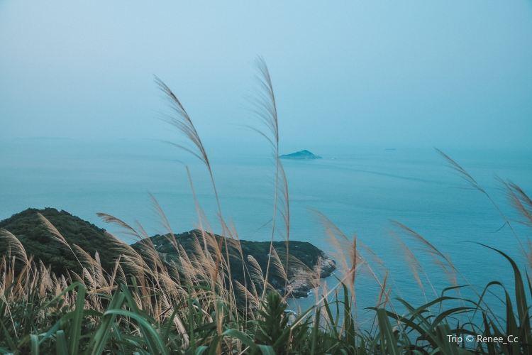 衢山島風力發電場觀光平臺3