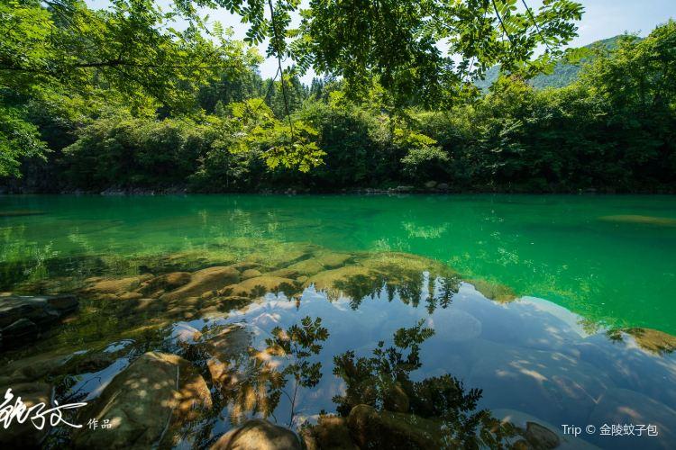 치먼구뉴장(기문고우강)4