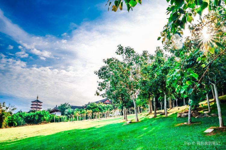 南山文化旅遊區4